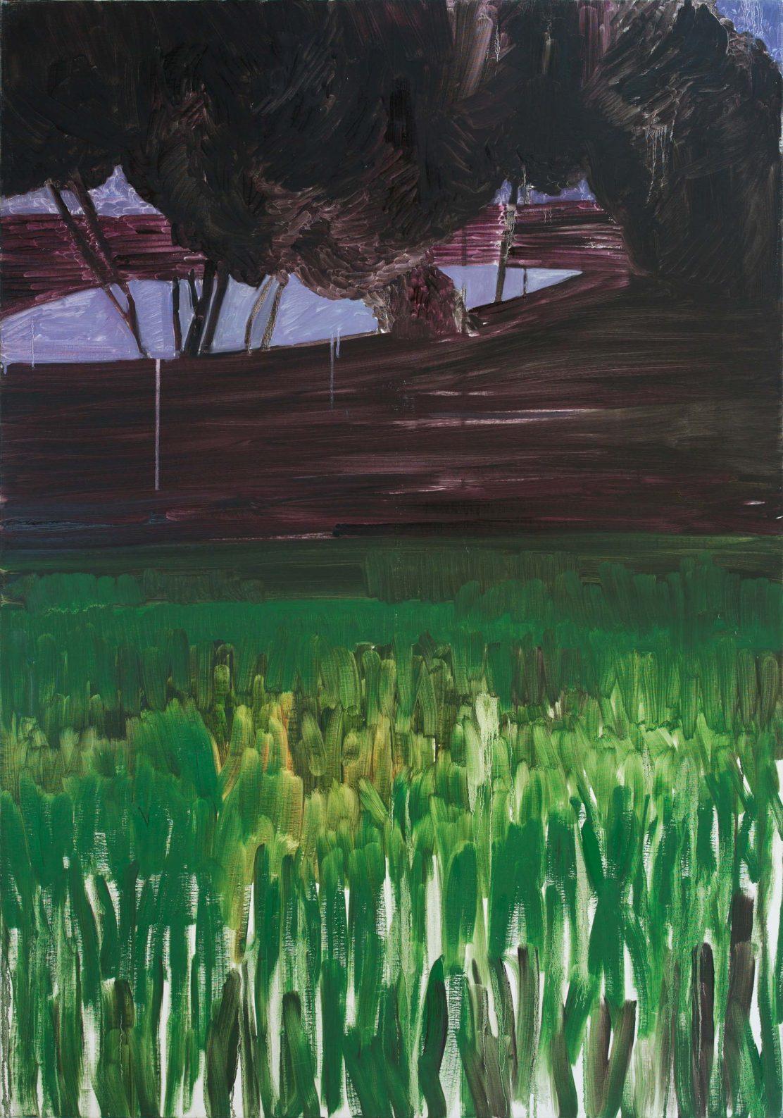 Landscape 4-4 2012 162×114 Oil Canvas