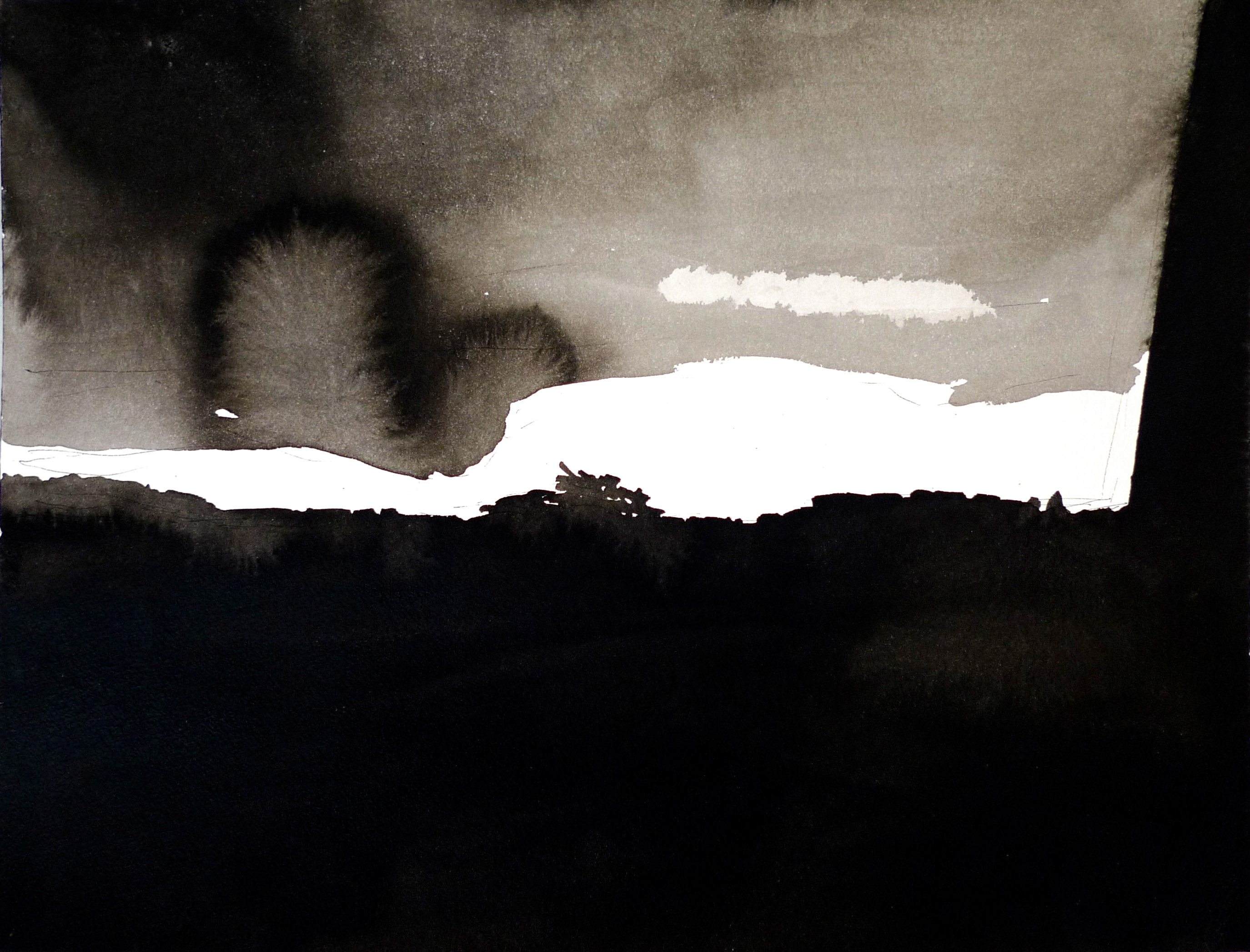 View 1-2. Ink, paper. 31x41cm. 2013