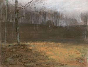 Winterscape 2-17. Ink, pastel, paper. 24x32cm. 2012