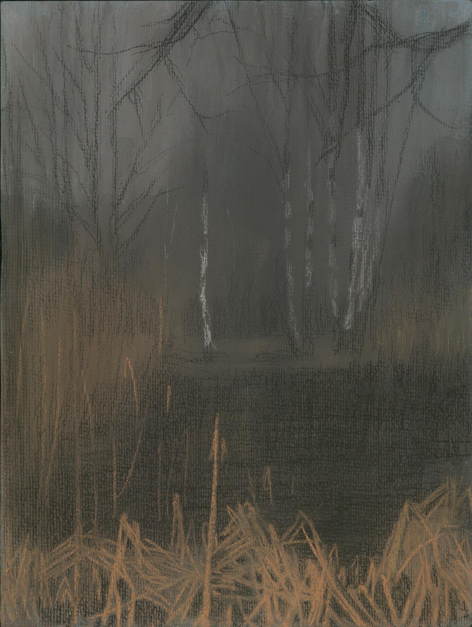 Winterscape 6-17. Ink, pastel, paper. 32x24cm. 2012