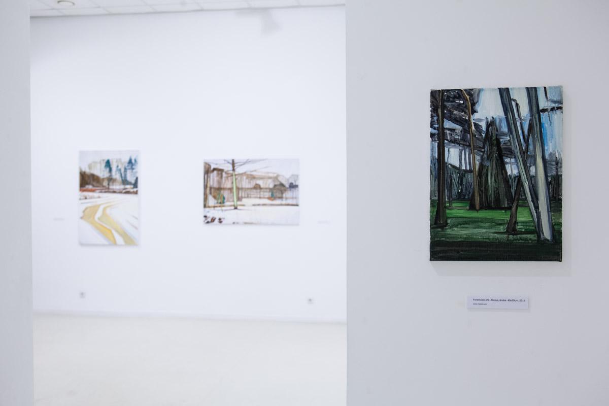 Solo show at Klaipėda exhibition palace (photo: Nerijus Jankauskas)